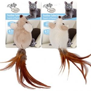 AFP Feather Tailed Mouse
